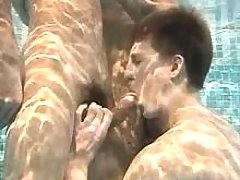 Some stallions act blowjob underside water