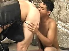 Asian gay doxy number 1 sucks off then gets hammered