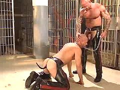Freaky homo submissive jaws depraved slavemaster on knees