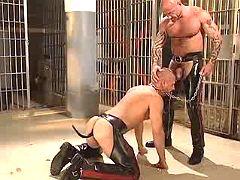Freaky homo submissive jaws depraved slavemaster on knees