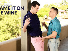 Blame it on the Wine