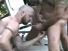 Bear melodious fruits fuck and jizz outdoor
