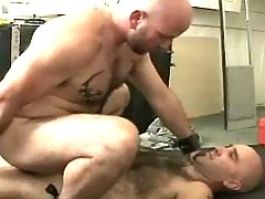Mature twink makes love in doggy style and rides cock