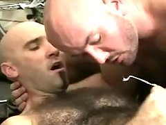 Bear gay guys cock cream by changes direction on unshaved belly