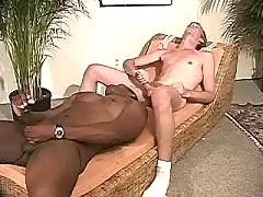Black rod permeates inflexible arse