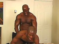 Lustful brown studs fuck brains out