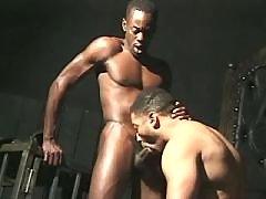 Lustful black gentlemen fuck brains out