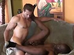 Black fellow benefits from assbanging in orgy