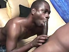 Black gay lovers in raunchy anal fest