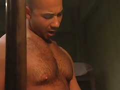 Bear hunk sucked by mellow gay