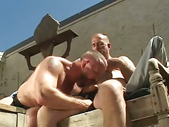 Hairy gay sucks rod of old stud