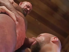 Old hairy twink sucked by bear man