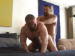 Lusty bear gays hard fuck in doggy style