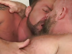 Two bear daddies kiss in sofa