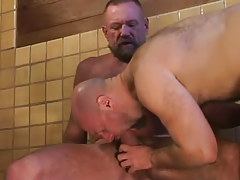 Bear dilf swallows heavy cock of mature faggot