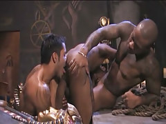 Interracial gays suck cocks and take up with the tongue holes in archeological dig
