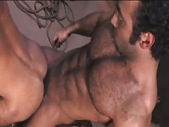 Bear Arabian gay fucks stud in doggy style