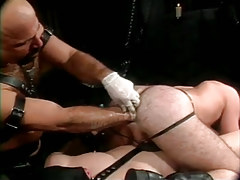 Mature bear chap fistfucks hairy males hole in gangbang