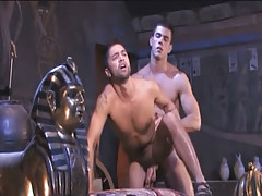 Muscle Arabian gays severe fuck in doggy style