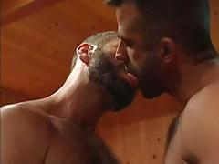 Bear gay guy kiss each other