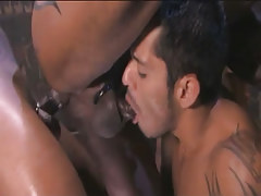 Arabian gay guy sucked and gets brown weenie in tight anus