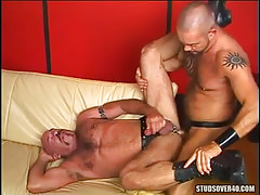 Hairy dilf jazzes old bear gay on sofa