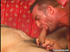 Horny dilf sucks hard weenie
