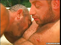 Muscle bears kissing per other