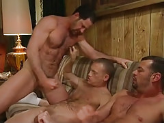 Bear melodious gays cock juice on guy