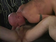 Bear ready gay sucking tasty pecker