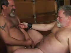 Mature bushy gay cums on old chubby stud