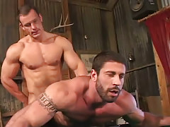 Muscle hunk has intercourse bear dilf in doggy style