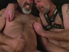 Mature bear man-lovers jizz by curves