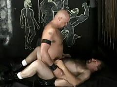 Gay dilfs rides bushy ripe stud