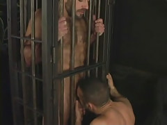 Hairy ready gay sucked in cage