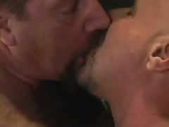 Hairy gay guys lick per other