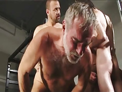 Hirsute faggot men fuck silver daddy in group sex