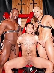 Next Door Ebony. Gay Pics 1