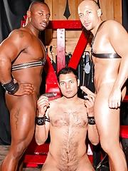 Next Door Ebony. Gay Pics 2