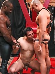 Next Door Ebony. Gay Pics 6