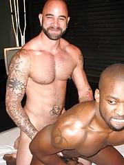 Next Door Ebony. Gay Pics 9